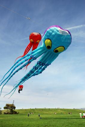 Categories include: highest flying kite, smallest and largest kite,