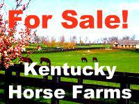 Kentucky horse farm for sale in Lexington KY  Thoroughbred by Lizette Fitzpatrick