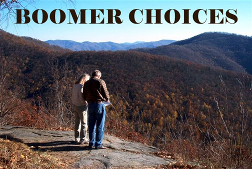 Baby Boomers VIEW