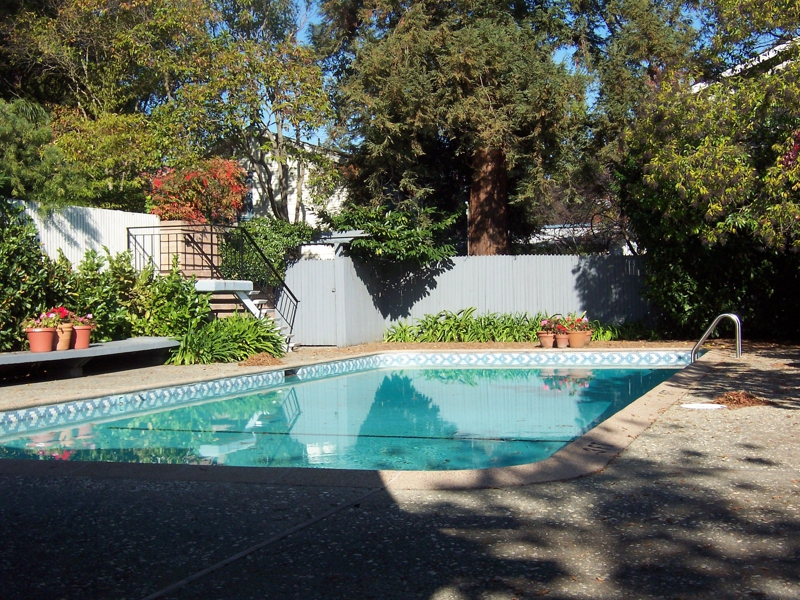 pool at 360 Everett Avenue, Palo Alto CA 94301
