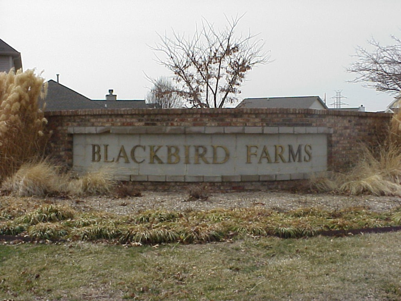 Blackbird Farms 3 Bedroom homes for sale in West Lafayette, Indiana close to Purdue contact Sharon and Bruce Walter Keller Williams Realty Lafayette, IN