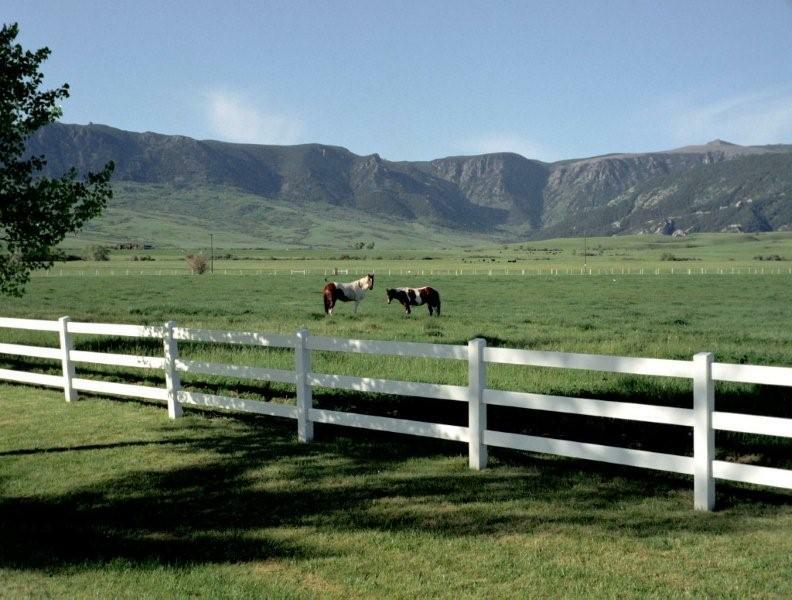mountain views trees waterhorse ranches in big horn wyoming horse ranches 792x600
