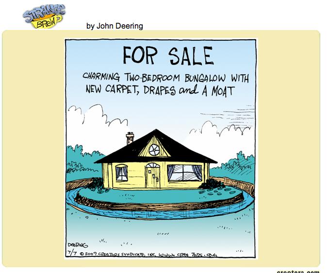 Funny Real Estate Comics