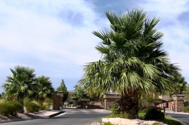 Calais Mesquite NV Luxury Homes in a gated golf course community