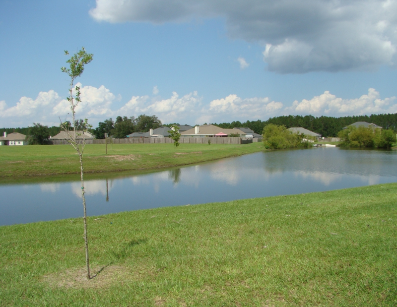 Glen Haven subdivision Green Cove Springs Fl