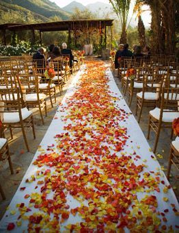 outdoor-wedding-on-a-budget-aisle