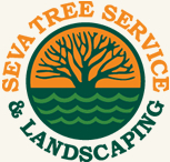 SEVA tree service and landscaptin