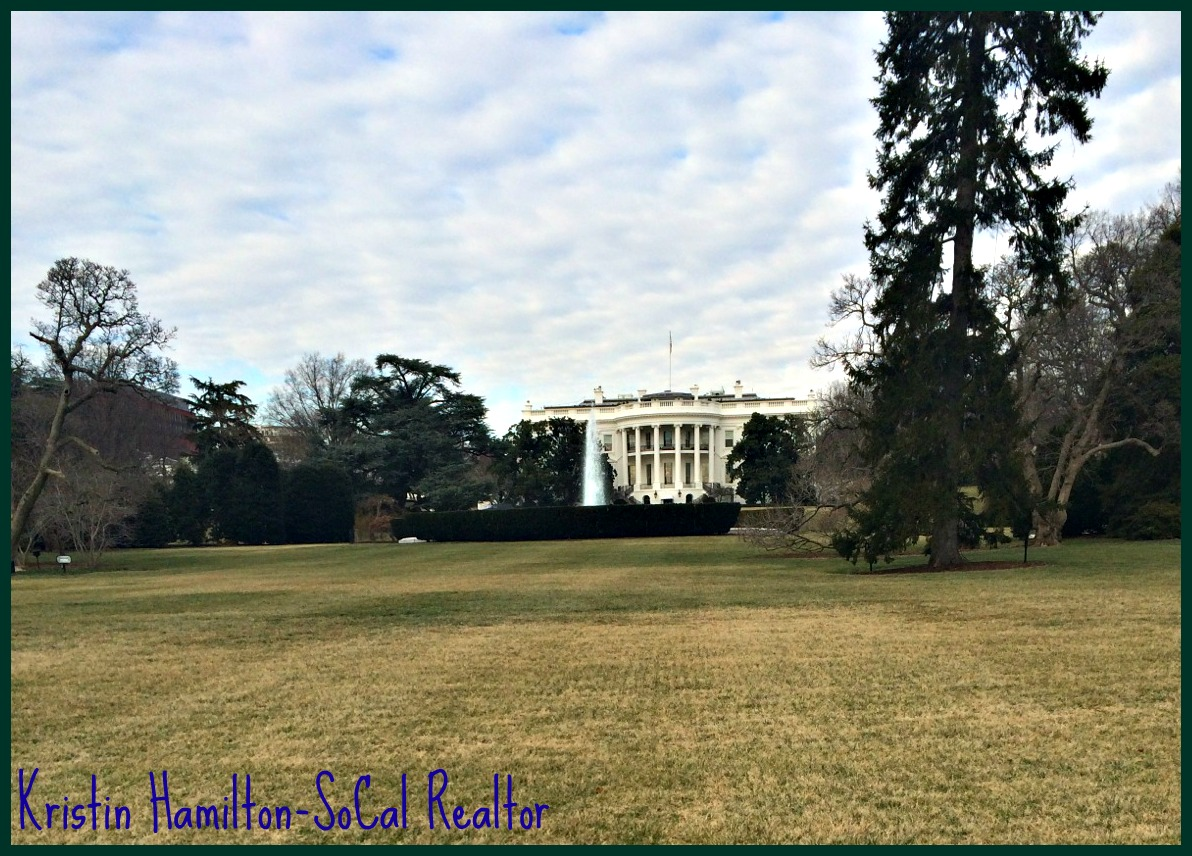 My Pictures of Washington D.C. and The History of President's Day
