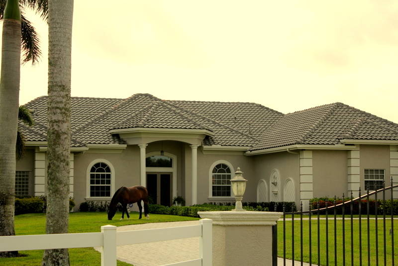 Paddock Park 2 - An Equestrian Community
