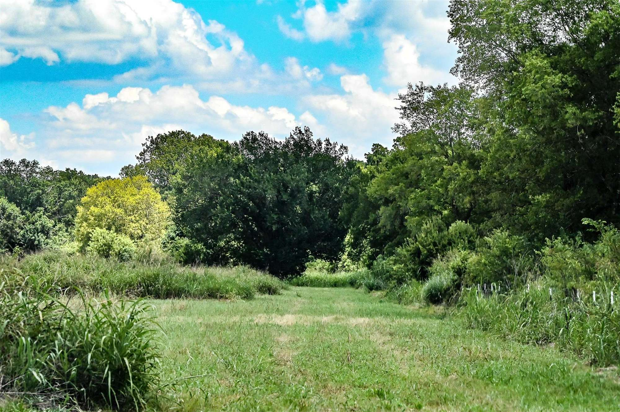 139 acre investment property in Ellis County TX, hunting, farming, off roading