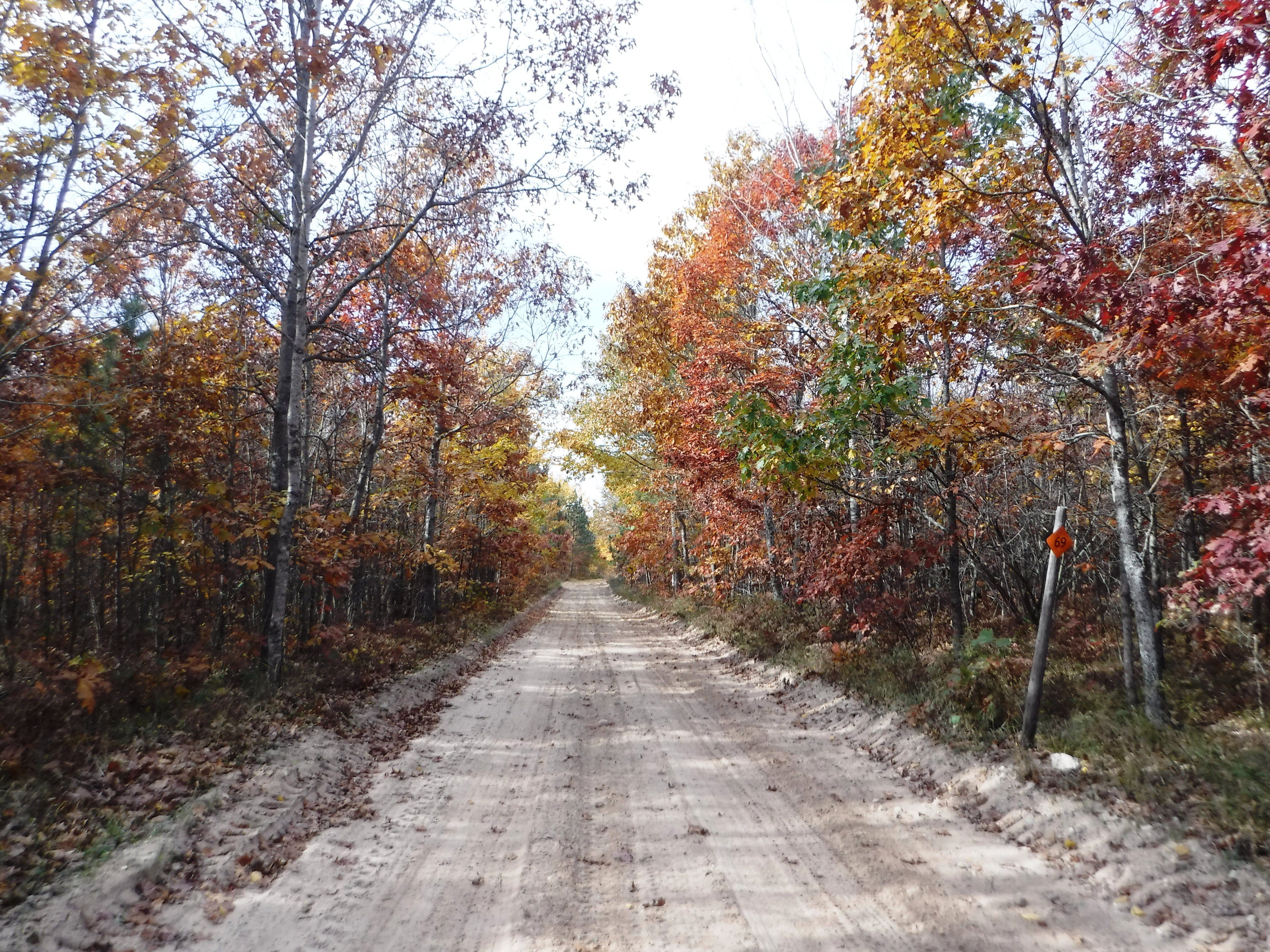 St. Helen Michigan Atv Trail Ride Fall Colors