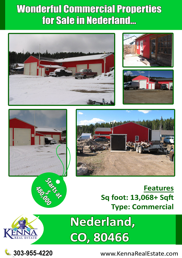 wonderful commercial properties for sale in nederland