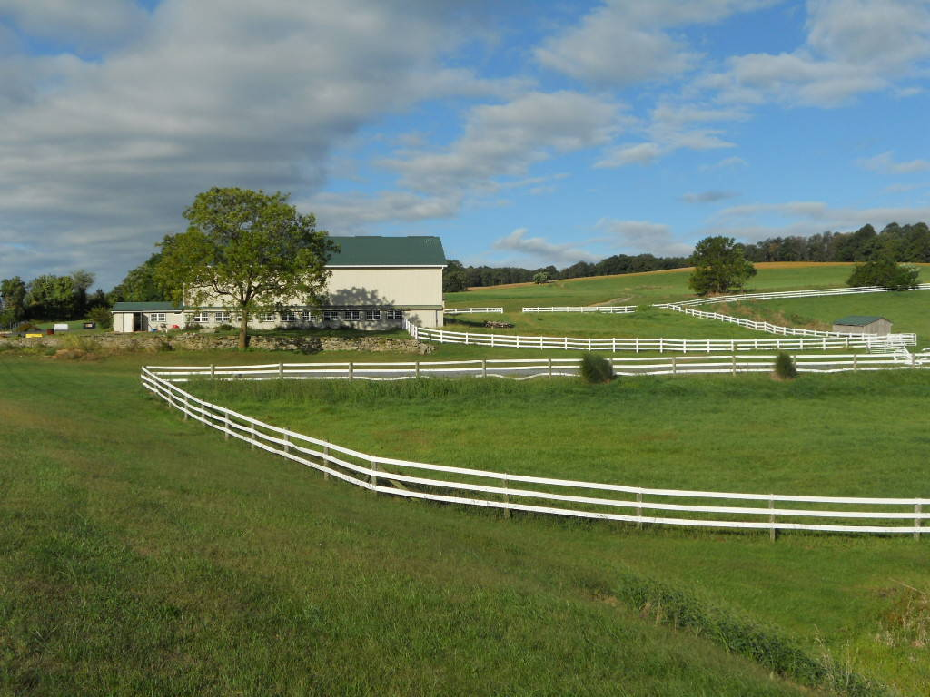Steps to Selling Your Horse Farm