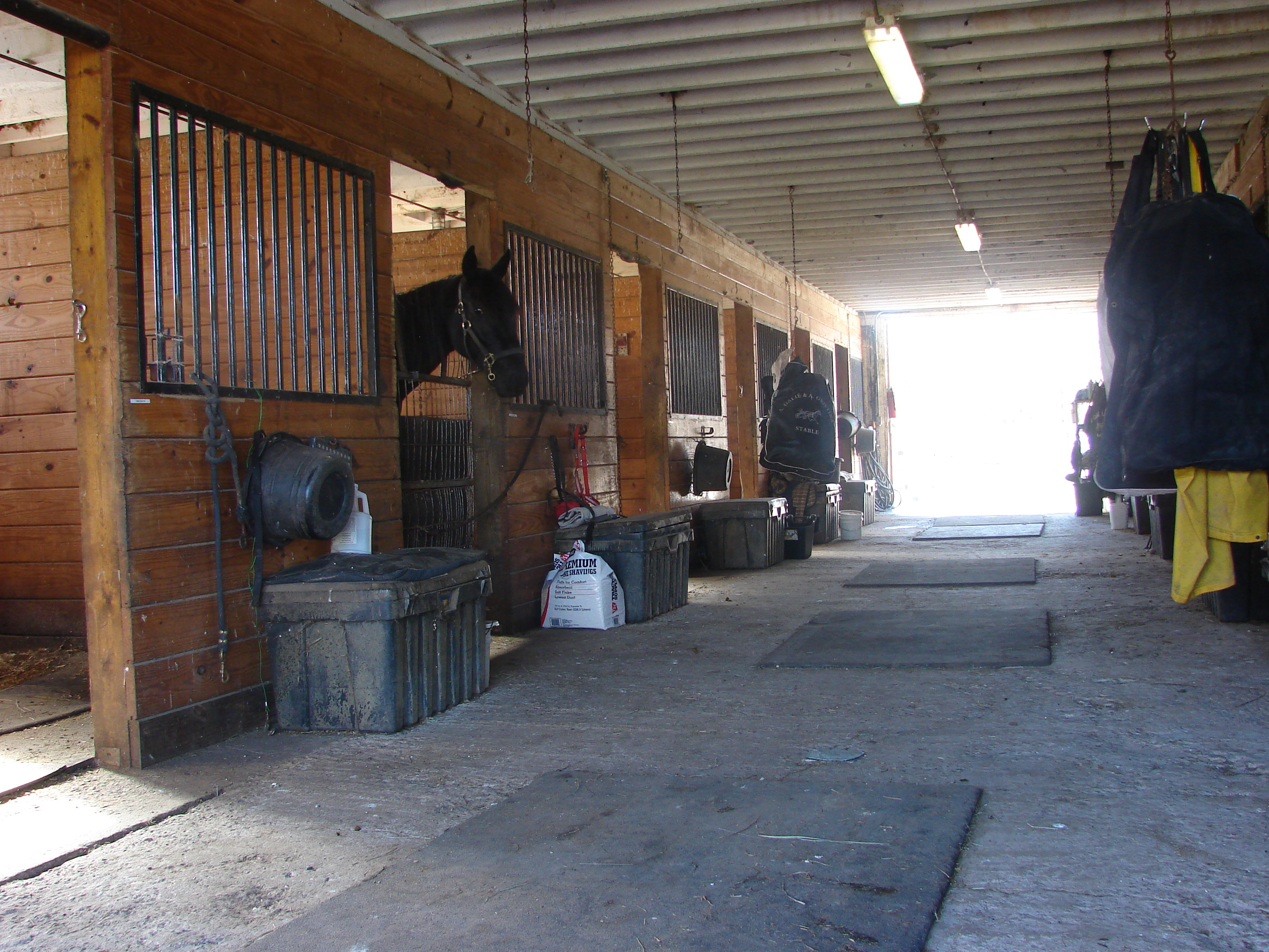 Stalls in barn to be kept in good shape when preparing to sell your PA horse property