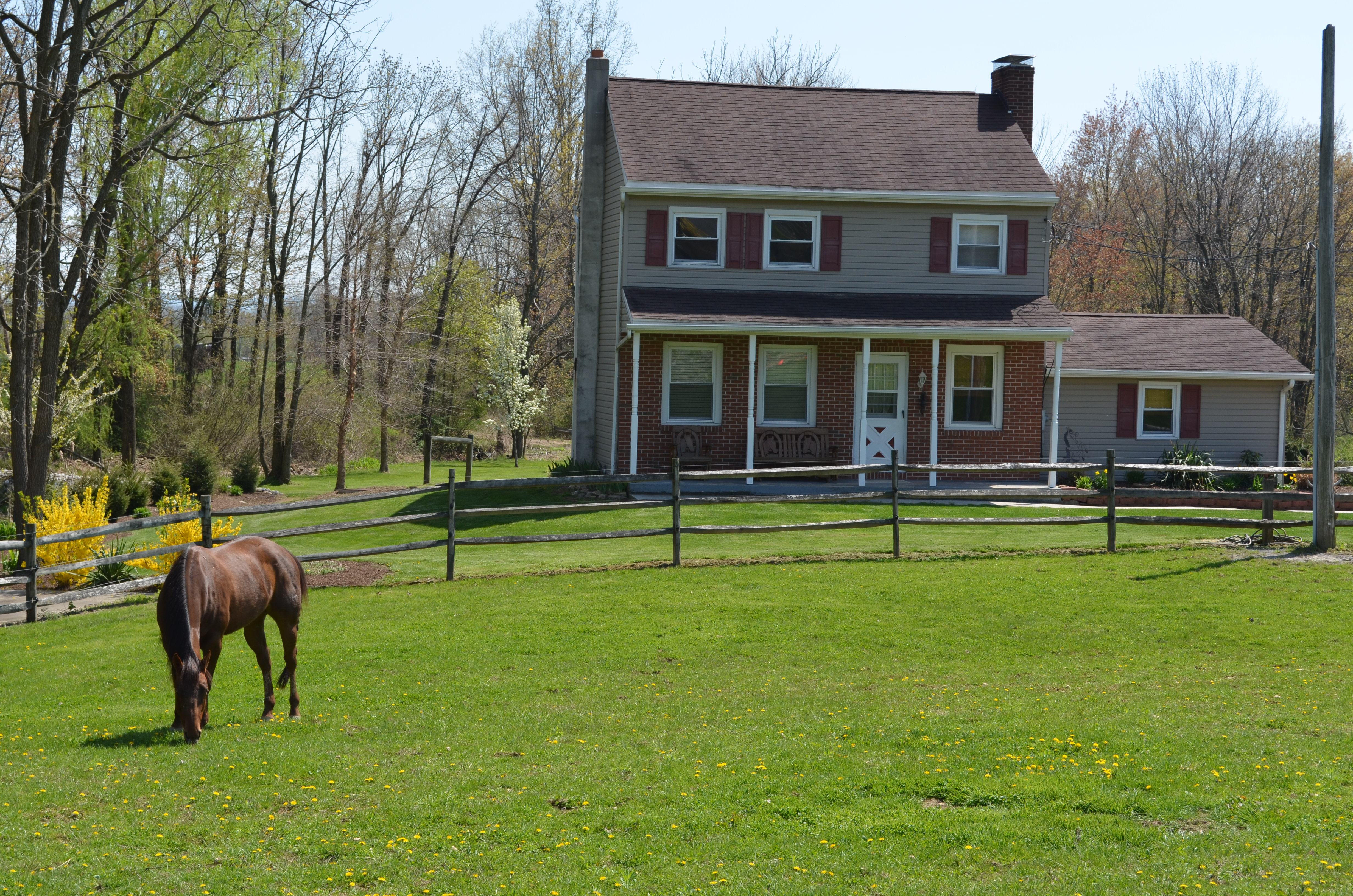 Simple Ways To Increase Your Horse Farm S Value
