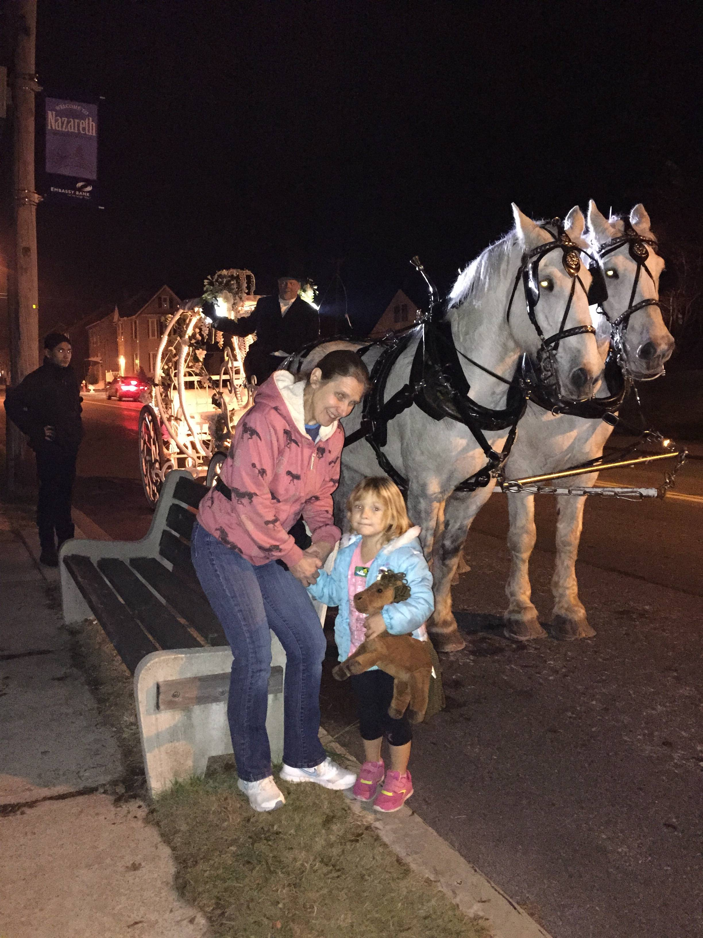 Christmas Carriage Ride - Horsey Wordless Wednesday