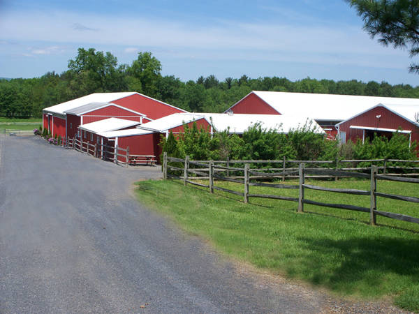 Preparing your PA Horse Property or Farm to Sell