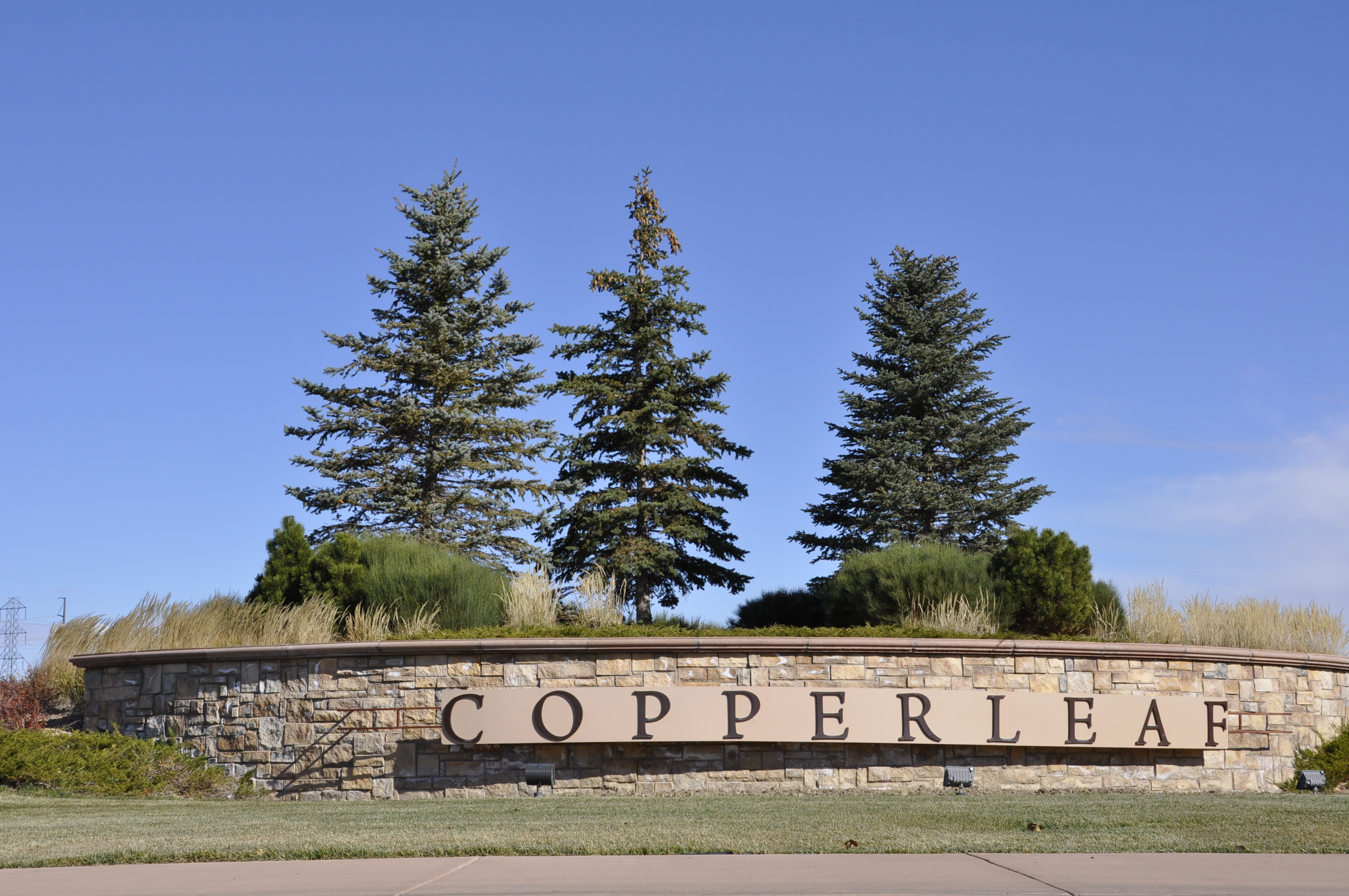 homes for sale in copperleaf