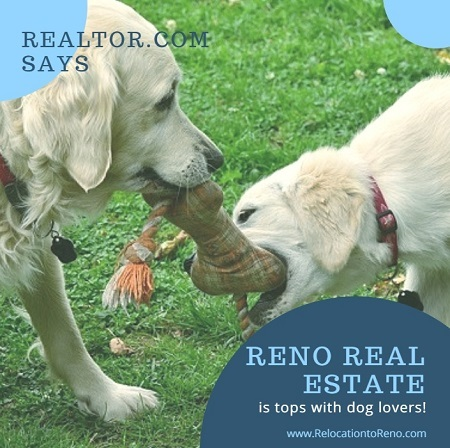 Realtor.com recently named Reno as one of its Best Cities for Dog Lovers in 2017 thanks to its pet-friendly restaurants, services, events and more.