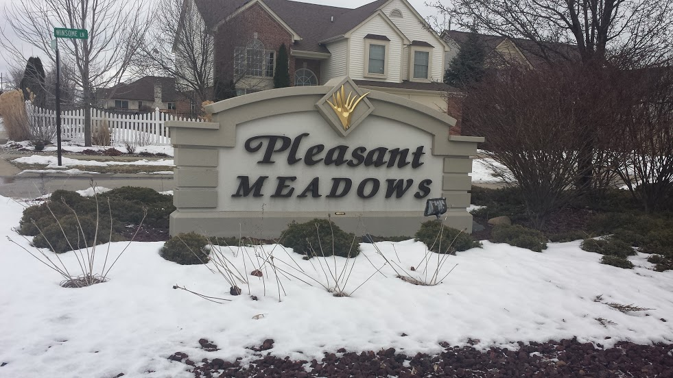 Homes For Sale In Pleasant Meadows In Chesterfield Twp MI
