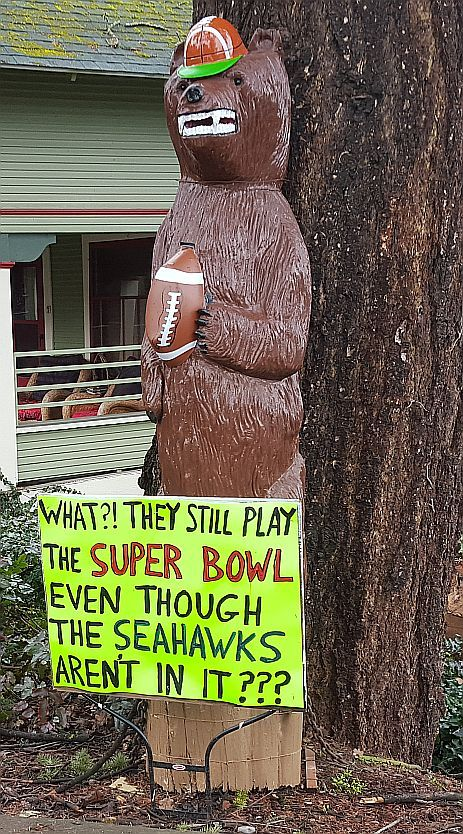 Hood River Bear Super Bowl 1