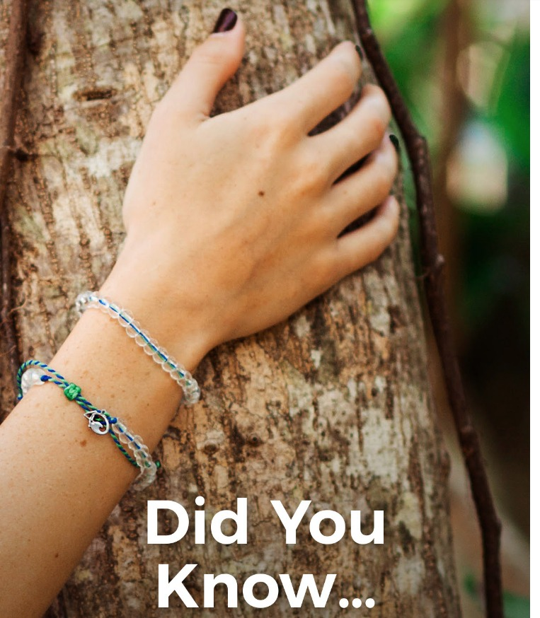 Did you know bracelet