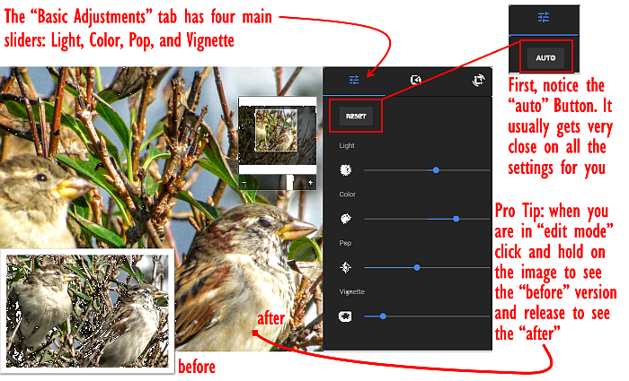 basic adjustment tools in google photos
