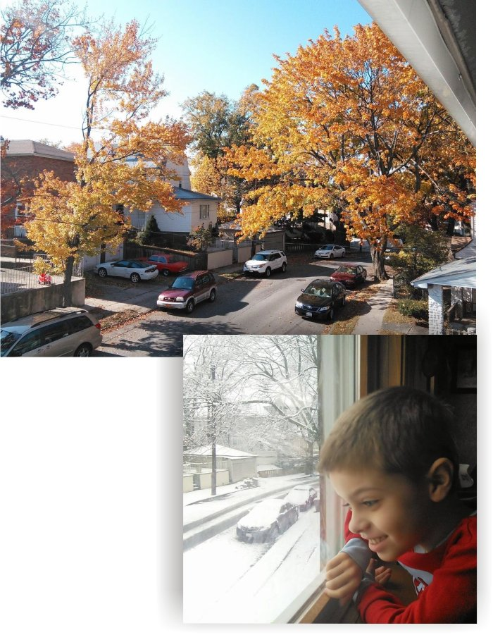 autumn and winter views from our window