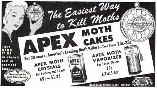 Apex, North Carolina? We're Not Just Moth Flakes! We're #1 in the USA!