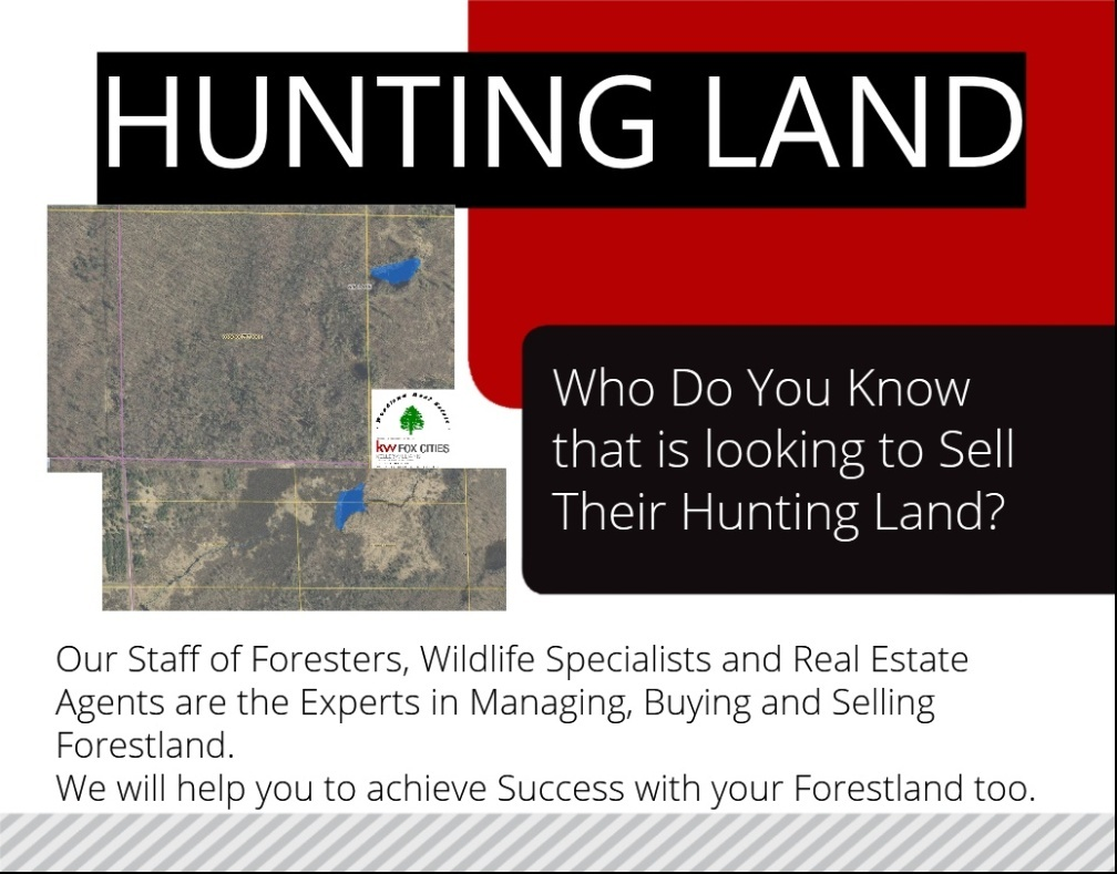 Wisconsin Forestland Wanted
