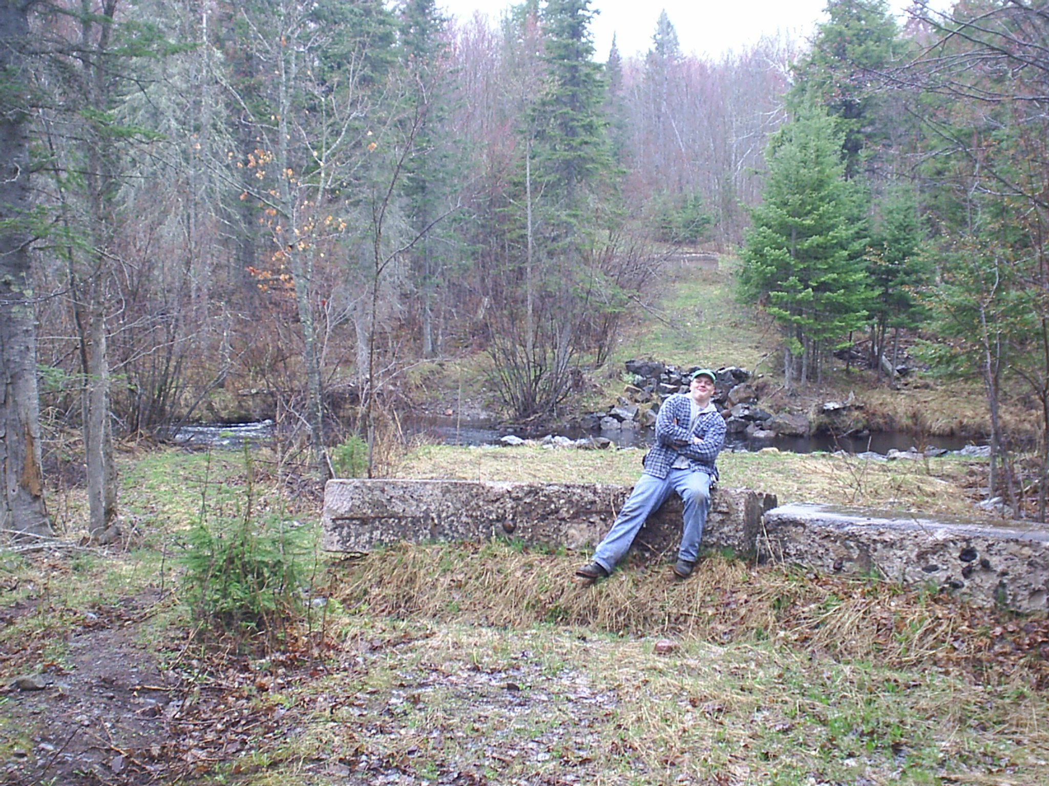 Woodland Management Service Forester in upper michigan