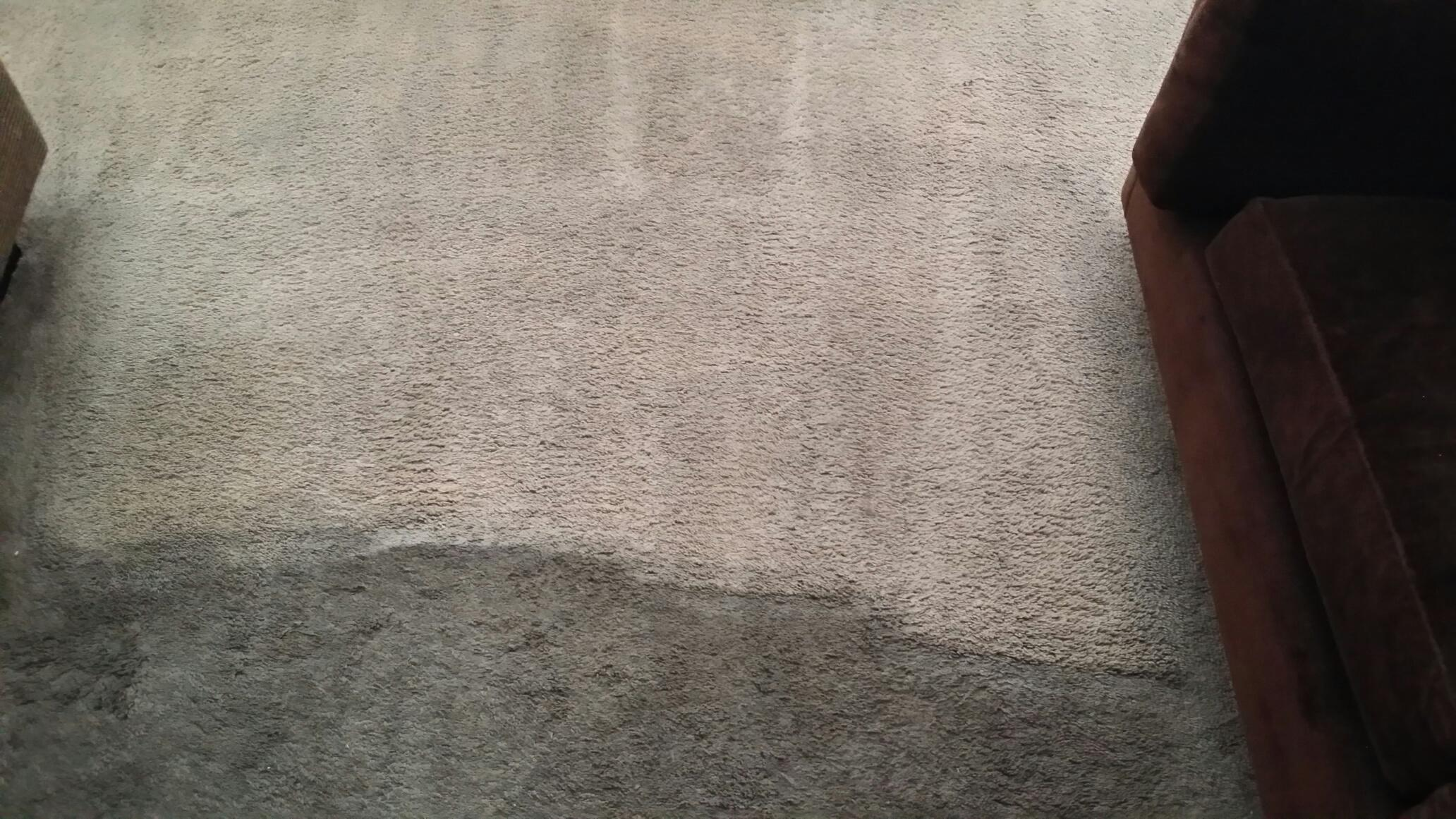 wall to wall carpet cleaning