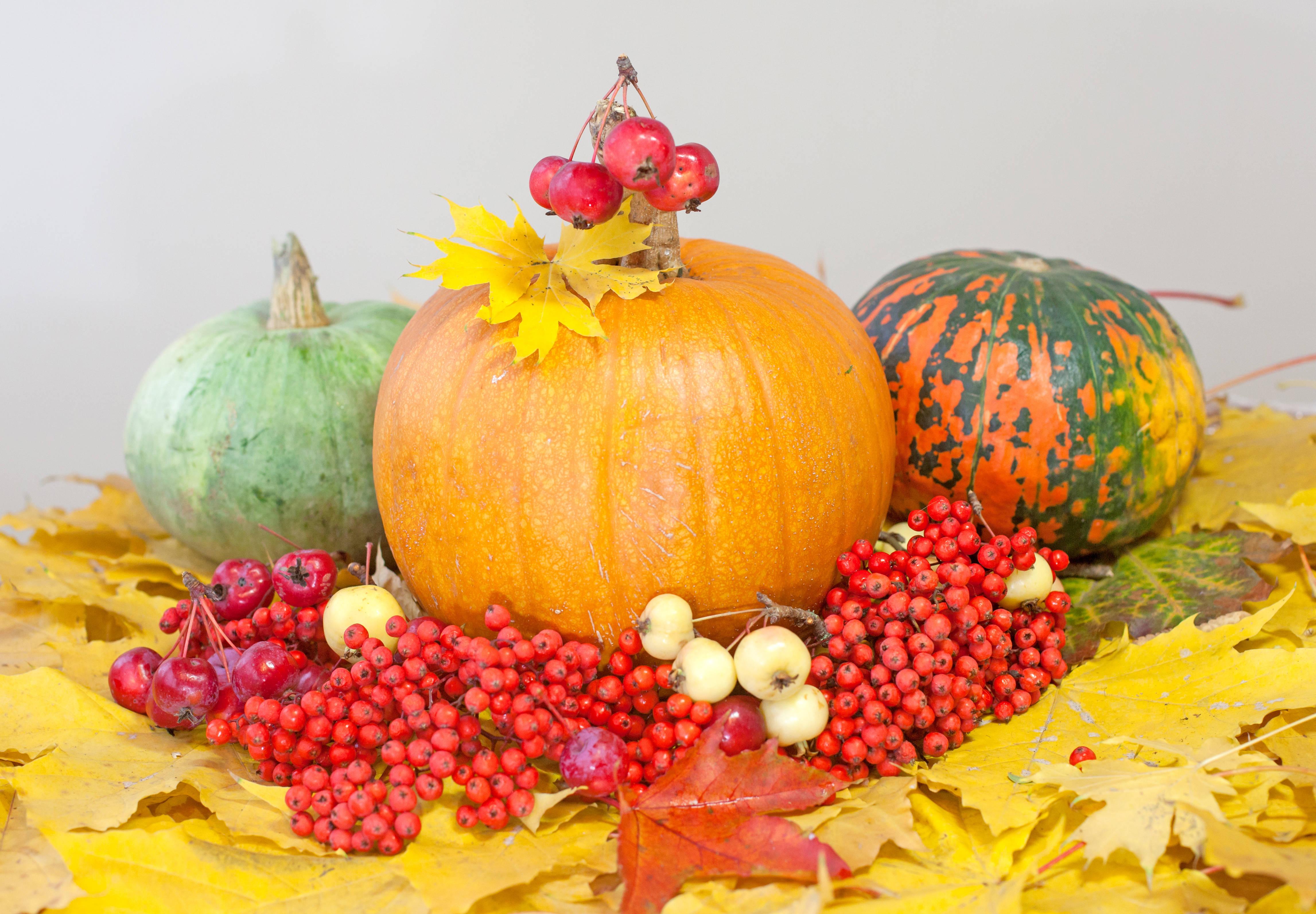 Decorating at thanksgiving using the bounty of season