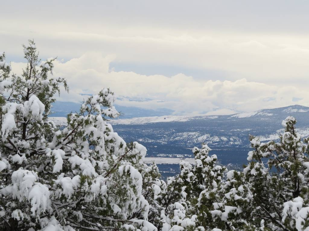 Grand Mesa Cabins and Lots for Sale Real Estate Information Dec 2016