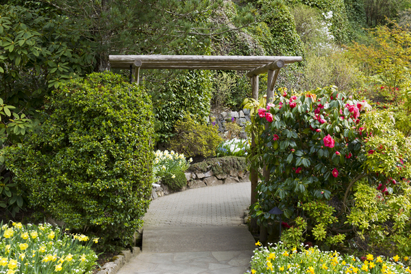 Daniel Stowe Botanical Garden A Year Round Charlotte
