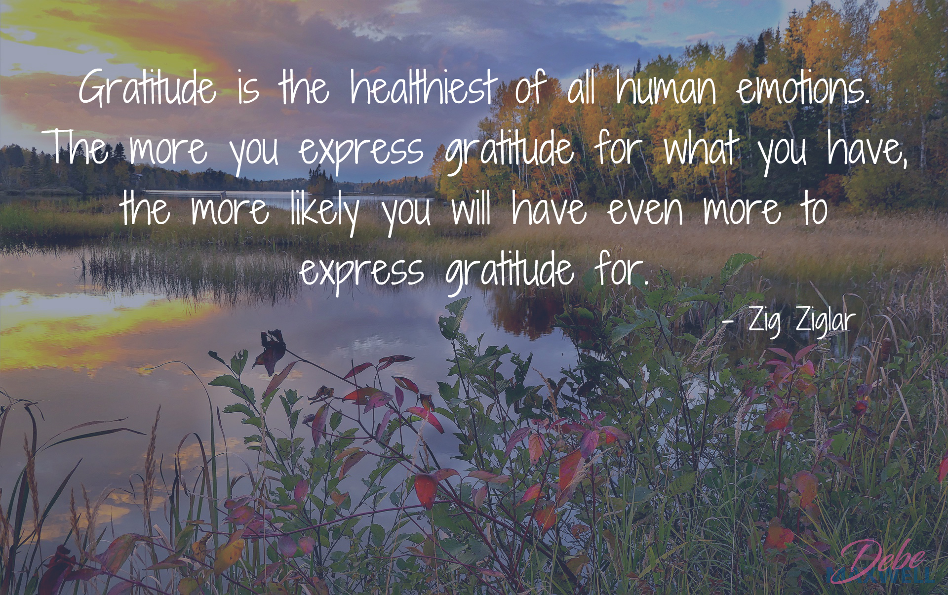 Gratitude is the healthiest of all human emotions