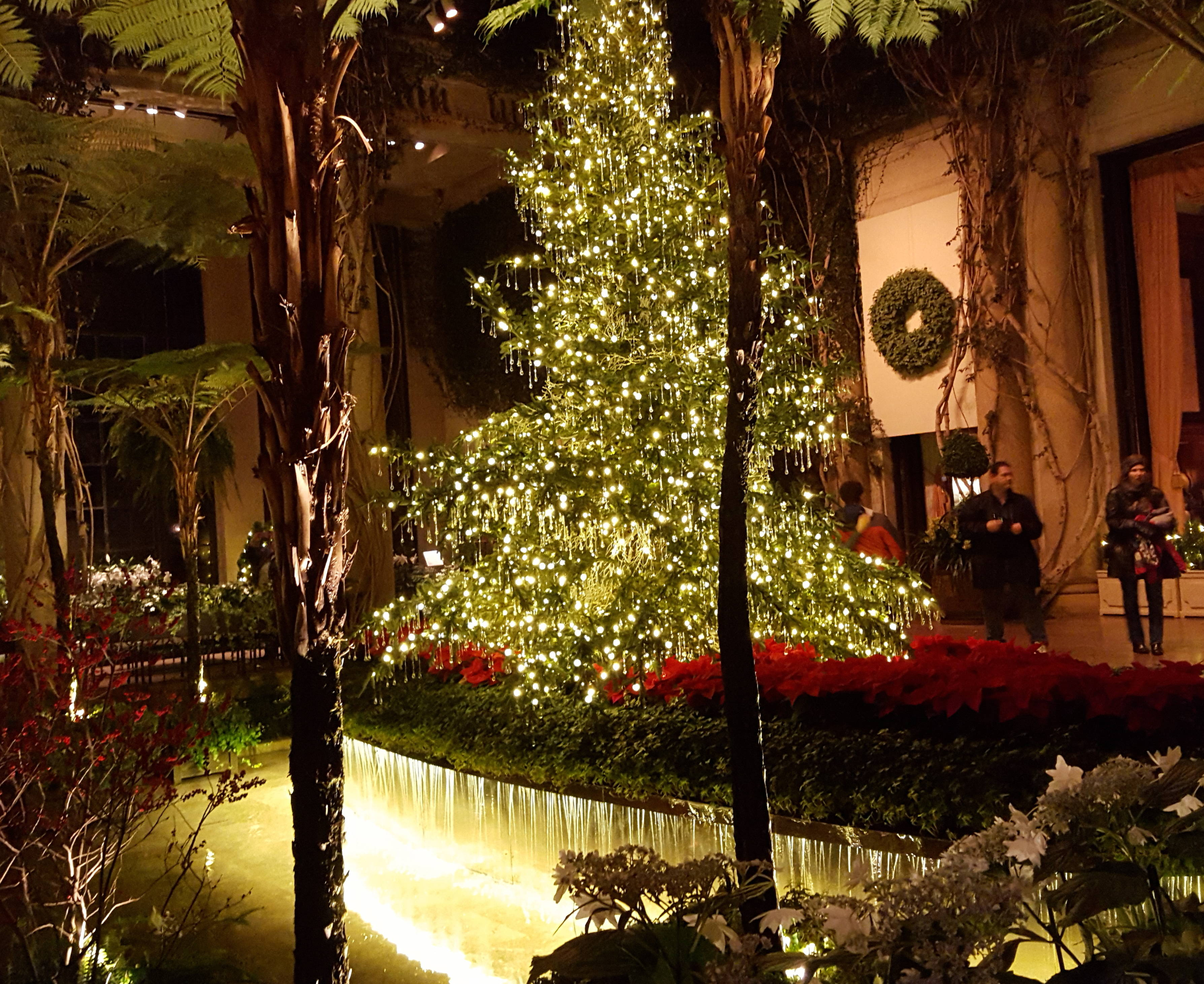 Spending New Year\'s Eve at Longwood Gardens