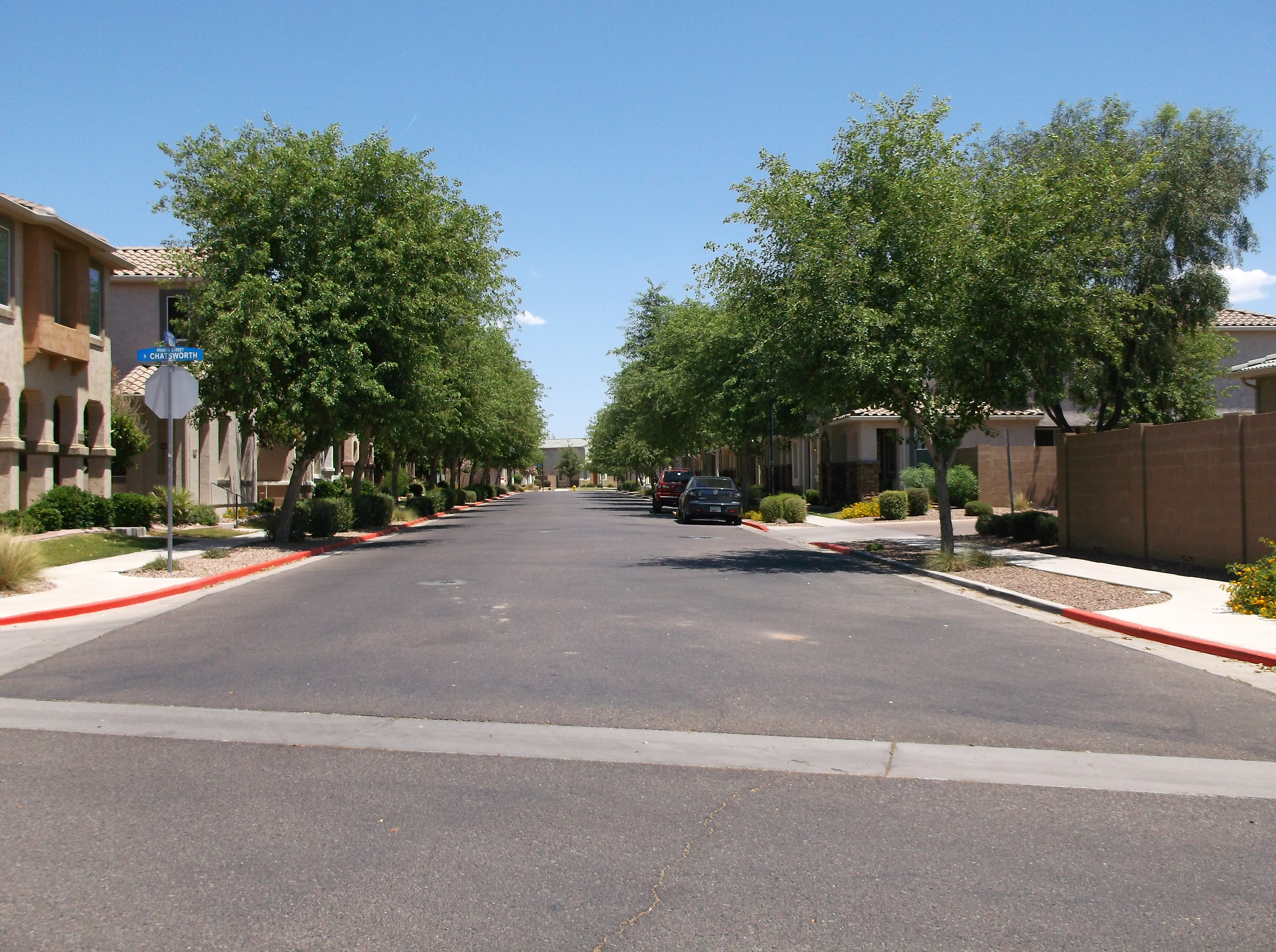 Tree lined streets in Crismon Creek in mesa