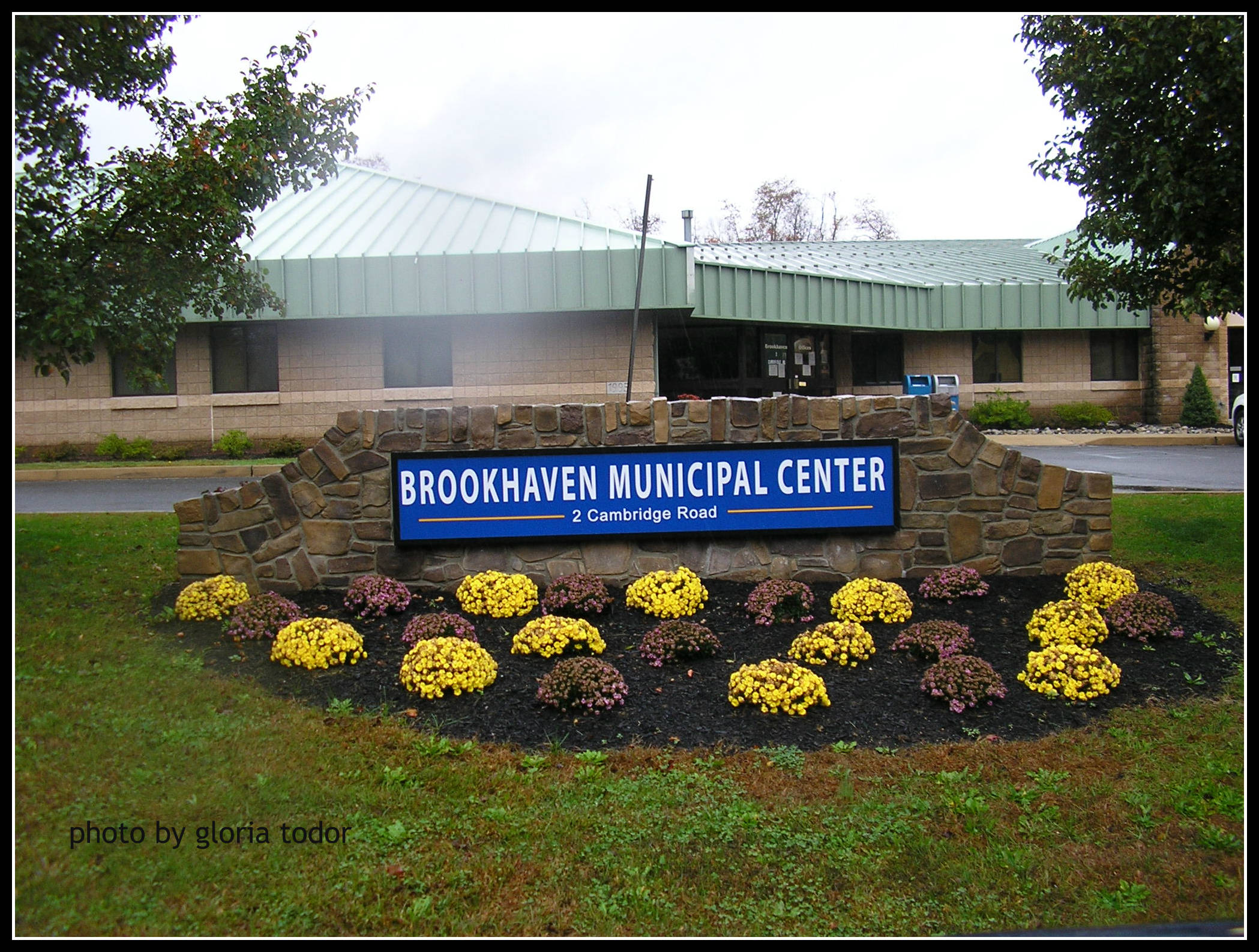 Brookhaven PA Real Estate