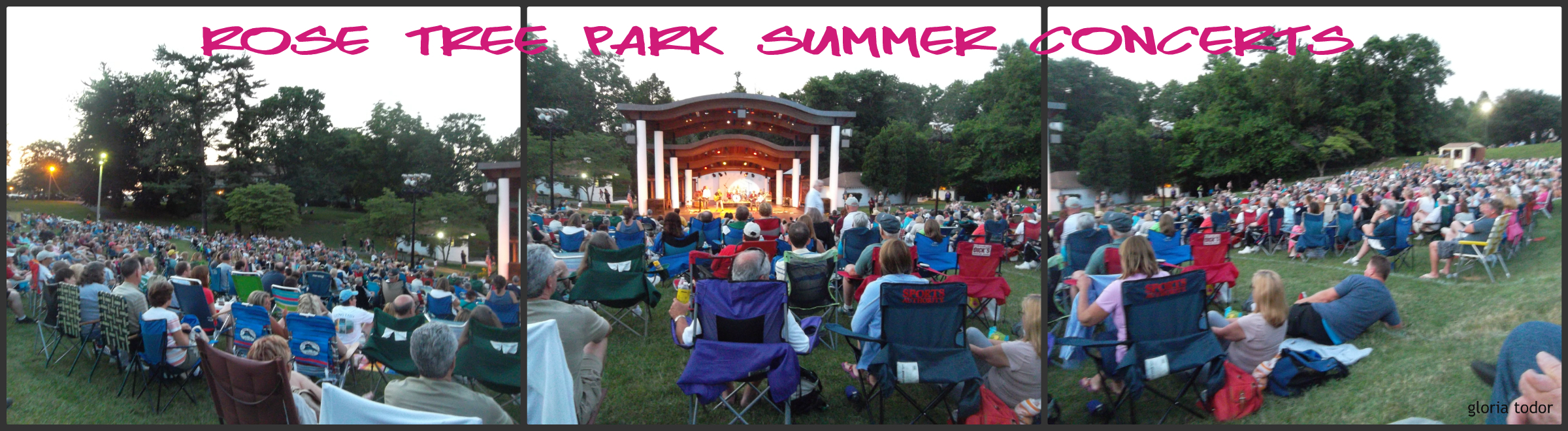 Rose Tree Park Summer Concerts
