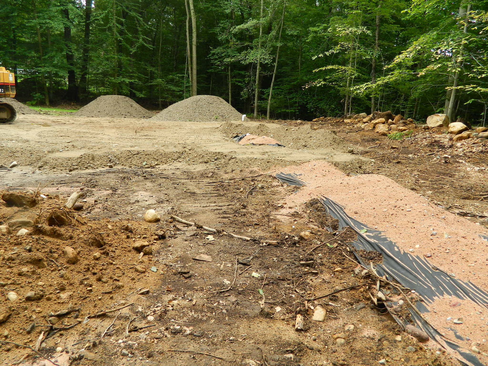 Understanding and Living with a Septic System
