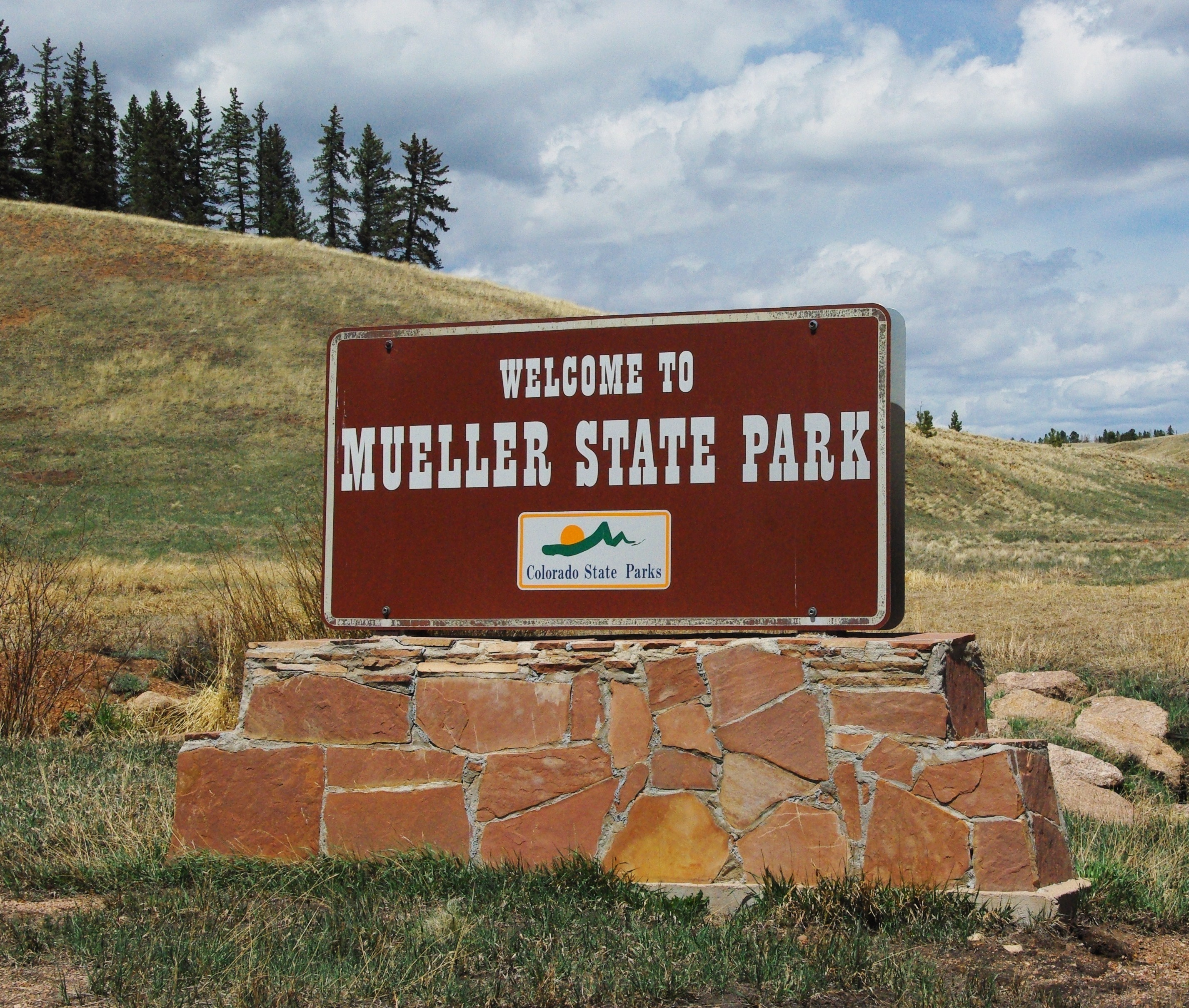 Mueller State Park Camping That Camping Feeling Blog Series