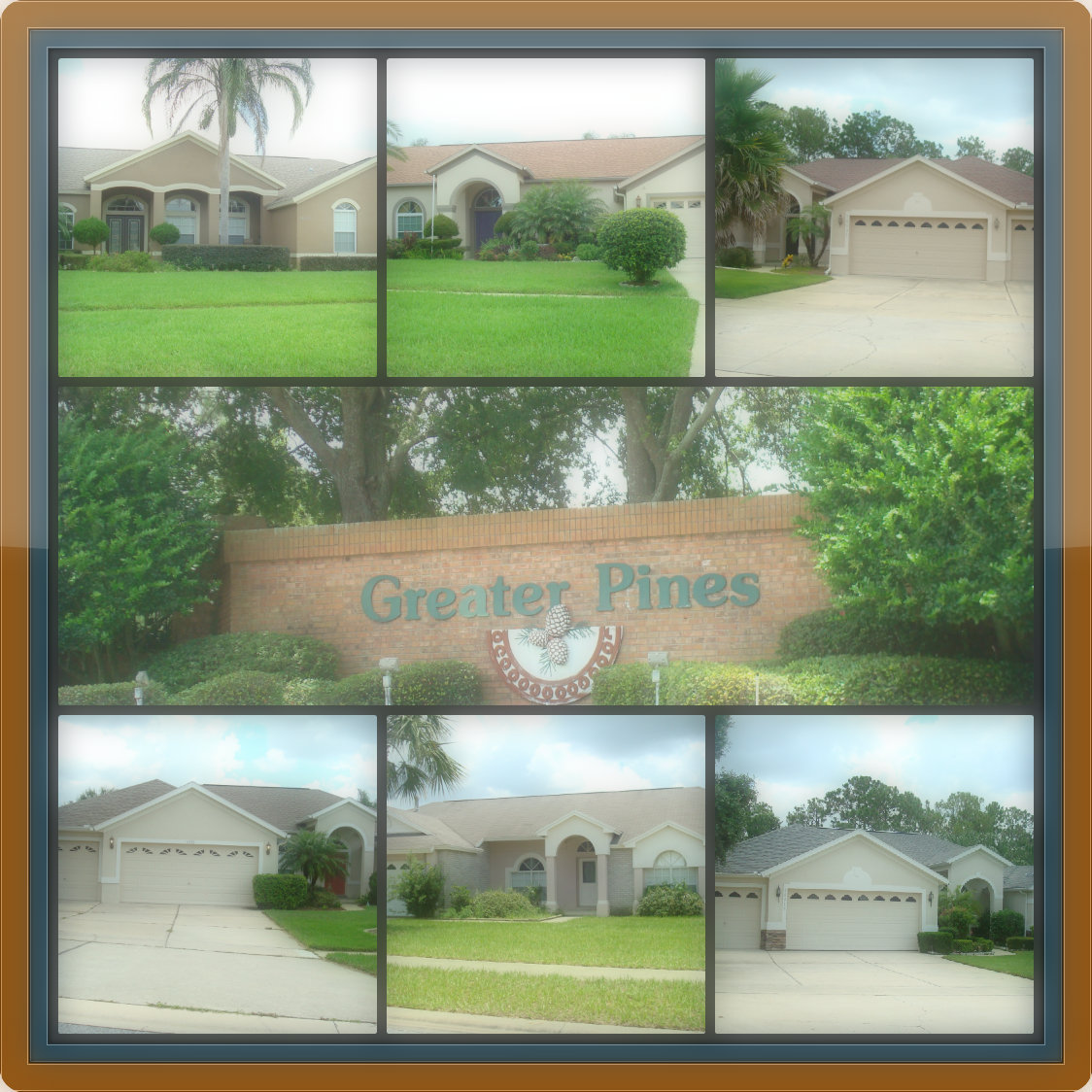 Greater Pines Clermont FL Homes for Sale