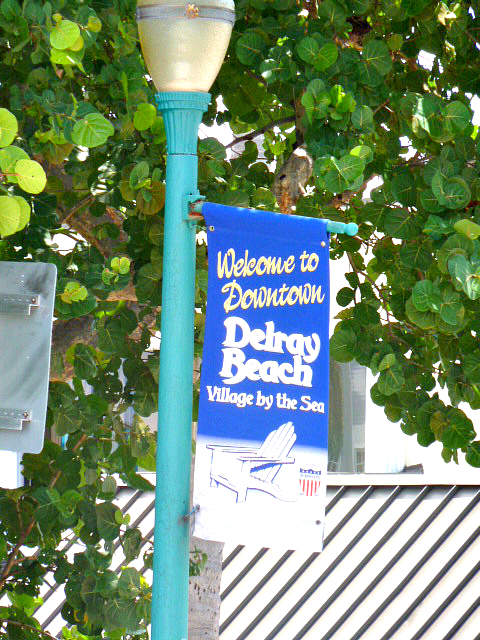 pet friendly homes for sale in delray beach