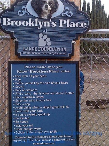 brooklyn's place, endre barath, lange foundation