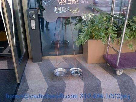 Pet friendly hotels in Los Angeles, Endre Barath Pet friendly Realtor In Los Angeles