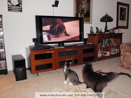 jill & dougy watching TV