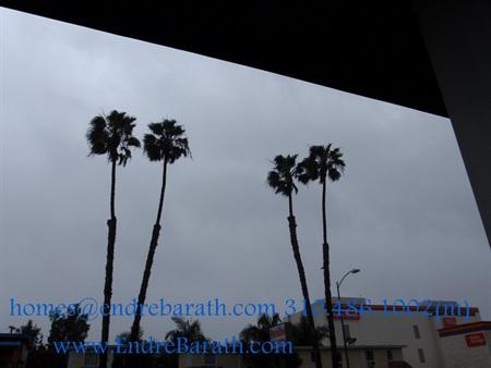 Endre Barath Rain in Los Angeles,