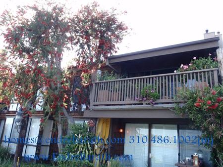 Marina Del Rey,CA, Mariner's Village, Spring, Endre Barath Relocation Realtor