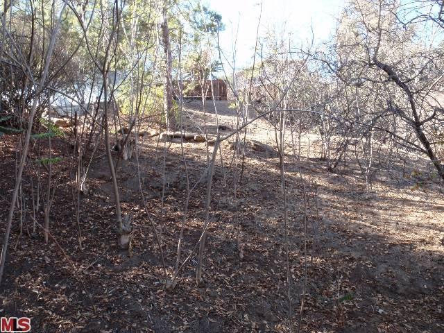 Silver Lake/ Echo Park area land, Endre Barath